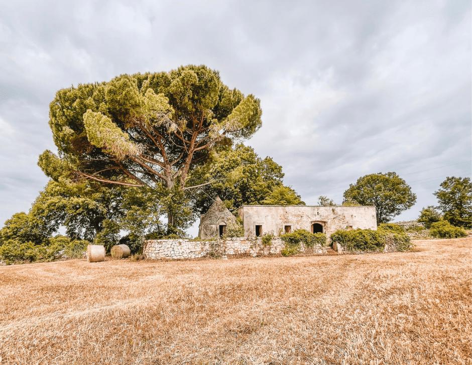 Scorcio campagna Valle d'Itria con trullo e balle di fieno